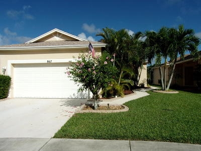 Port Saint Lucie Single Family Home For Sale: 867 SW Rocky Bayou Ter