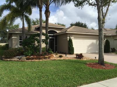 Boynton Beach Single Family Home For Sale: 8258 Duomo Circle