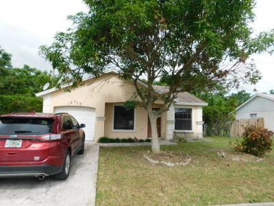 Royal Palm Beach Single Family Home Contingent: 10779 Dalmany Way