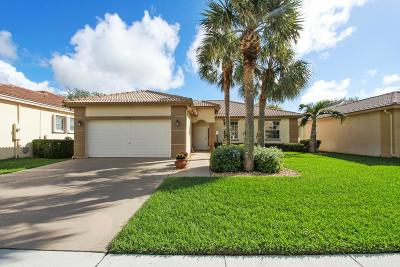 Lake Worth Single Family Home For Sale: 3750 Spring Crest Court