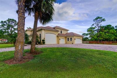 Palm Beach Gardens FL Single Family Home For Sale: $1,475,000
