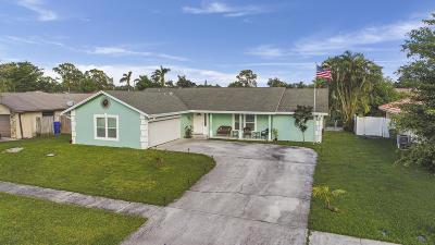 Royal Palm Beach Single Family Home For Sale: 110 Santander Court