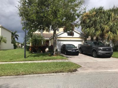 Royal Palm Beach Single Family Home For Sale: 142 Hamilton Terrace