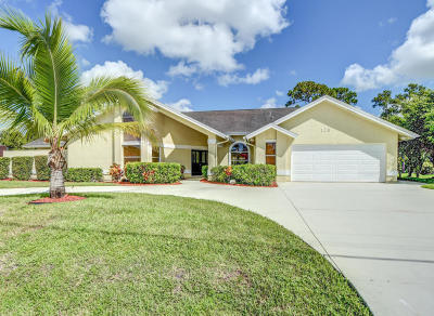 Port Saint Lucie Single Family Home For Sale: 129 NE Naranja Avenue