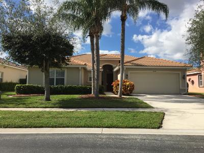 Lake Worth Single Family Home For Sale: 6525 La Gorce Lane