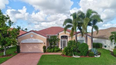 Lake Worth Single Family Home For Sale: 9523 Caserta Street