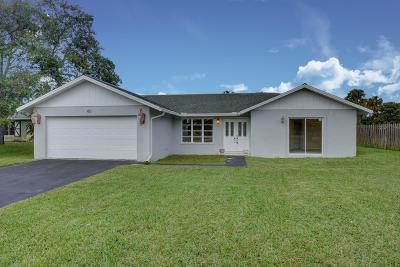 Royal Palm Beach Single Family Home Contingent: 185 Rivera Avenue