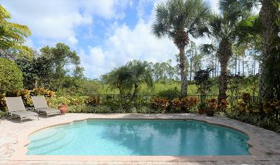 Palm Beach Gardens Single Family Home For Sale: 128 Porto Vecchio Way
