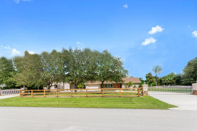 Lake Worth Single Family Home For Sale: 8763 Pinion Drive