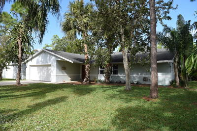 Lake Worth Single Family Home For Sale: 8765 Pinto Drive