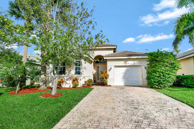 Port Saint Lucie, Saint Lucie West Single Family Home For Sale: 697 NW Stanford Lane
