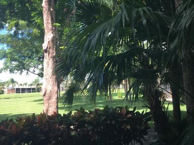 Banyan Springs Condo For Sale: 10143 Mangrove Drive #102