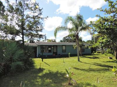 Hobe Sound Single Family Home For Sale: 8080 SE Camellia Drive Drive