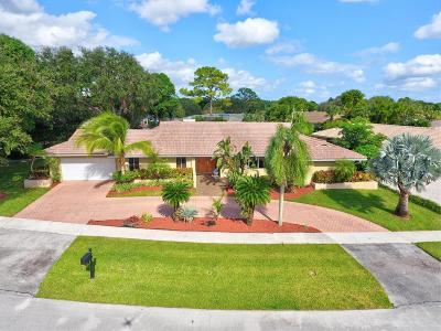 Boca Raton Single Family Home For Sale: 6921 S Grande Drive