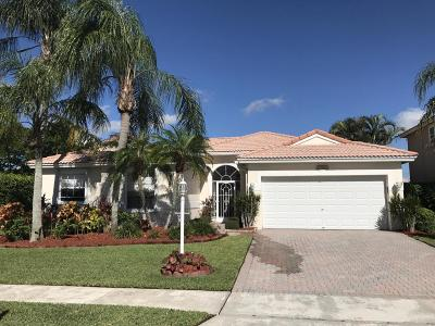 Boca Raton Single Family Home For Sale: 22065 Palm Grass Drive