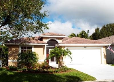 Wellington Single Family Home For Sale: 12083 Sunset Point Circle
