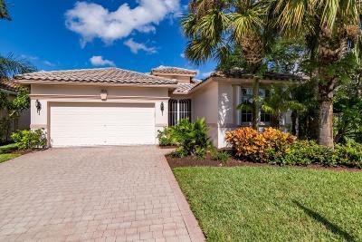 Lake Worth Single Family Home For Sale: 9833 Torino Drive