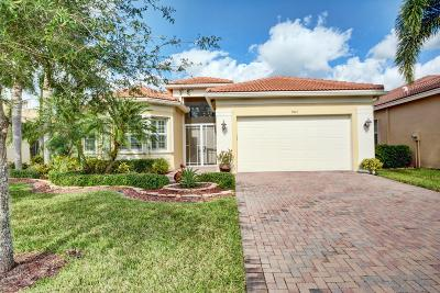 Boynton Beach Single Family Home For Sale: 9047 Grayson Court
