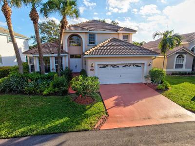 Boynton Beach Single Family Home For Sale: 9 Lawrence Lake Drive