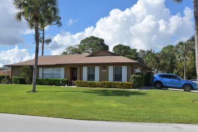 Palm Beach Gardens Single Family Home For Sale: 10083 Dasheen Avenue