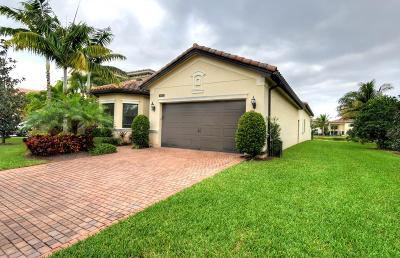 Delray Beach Single Family Home For Sale: 8973 Little Falls Way