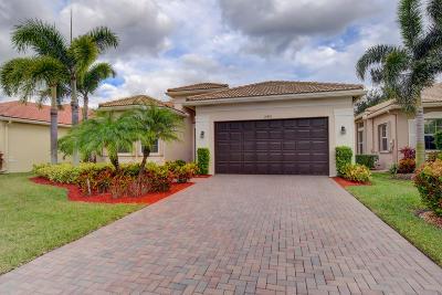 Boynton Beach Single Family Home For Sale: 10870 Broadview Bay Point