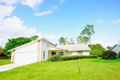 Palm City Single Family Home For Sale: 1241 SW Nikoma Street SW