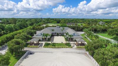 Loxahatchee Single Family Home For Sale: 3850 Duellant Road