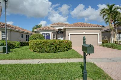 Boynton Beach Single Family Home For Sale: 6869 Southport Drive