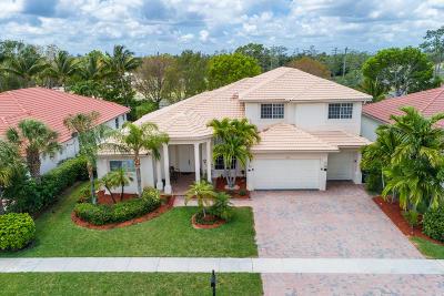 Wellington Single Family Home For Sale: 11847 Osprey Pointe Circle