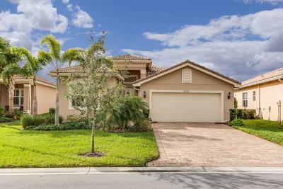Boynton Beach Single Family Home For Sale: 8334 Cloud Peak Drive