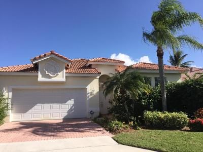 Boca Raton Single Family Home For Sale: 7150 NW Turtle Walk