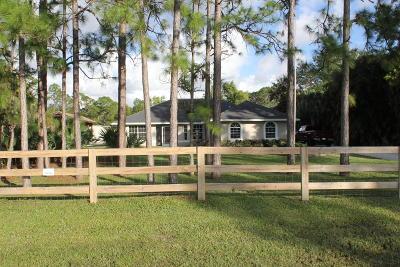 Jupiter Single Family Home For Sale: 17392 Mellen Lane