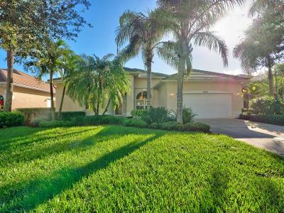 Palm City Single Family Home For Sale: 1659 SW Monarch Club Drive