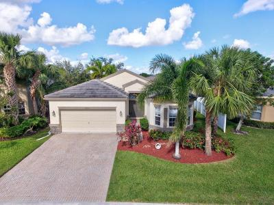 Lake Worth Single Family Home For Sale: 10231 Clubhouse Turn Road