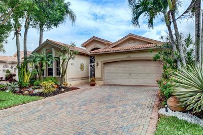 Boynton Beach Single Family Home For Sale: 7549 San Pedro Street