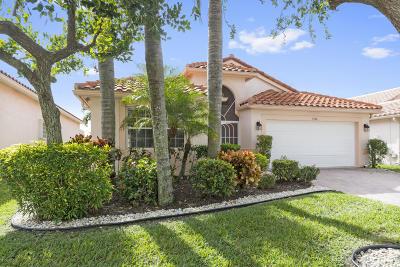 Boynton Beach Single Family Home For Sale: 5306 Grey Birch Lane