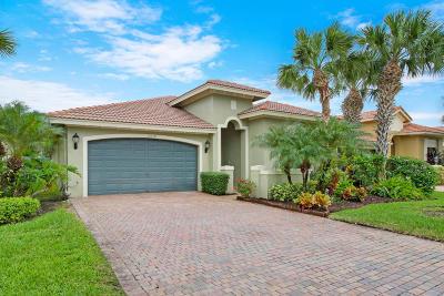 Boynton Beach Single Family Home For Sale: 10134 Noceto Way