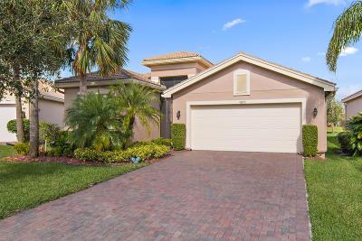 Boynton Beach Single Family Home For Sale: 9093 Meridian View Isle(S)