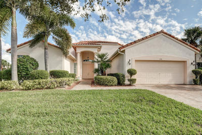 Port Saint Lucie Single Family Home For Sale: 230 NW Liseron Way