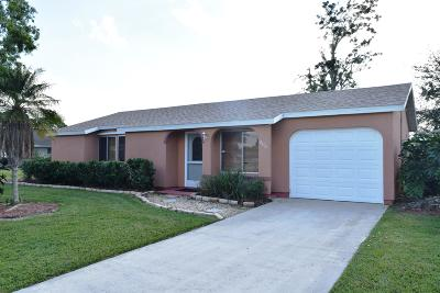 Port Saint Lucie Single Family Home For Sale: 206 SW Bridgeport Drive