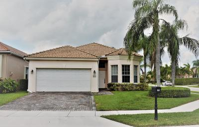 Boca Raton Single Family Home For Sale: 8551 Via Giardino