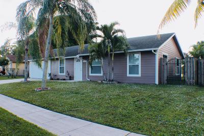 Royal Palm Beach Single Family Home For Sale: 1127 Harmony Way