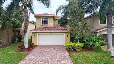 Boynton Beach Single Family Home For Sale: 7955 Picklewood Park Drive