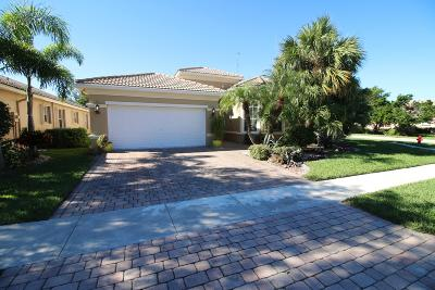 Lake Worth Single Family Home For Sale: 6425 Via Primo Street