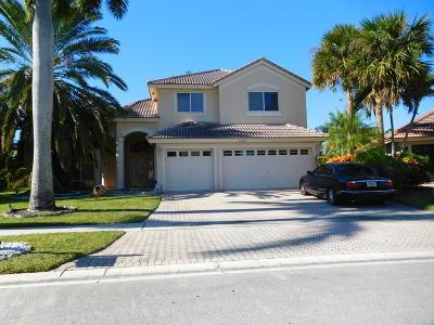 Boca Raton Single Family Home For Sale: 19682 Dinner Key Drive