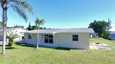 Jensen Beach Single Family Home For Sale: 2803 NE Spruce Ridge Avenue