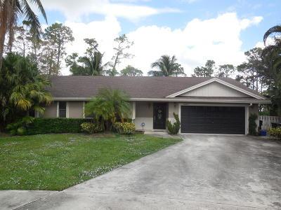 Wellington Single Family Home For Sale: 12266 Sawgrass Court