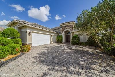 Boynton Beach Single Family Home For Sale: 9030 Equus Circle