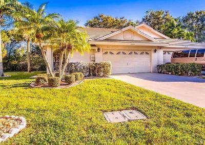 Boynton Beach Single Family Home For Sale: 4809 Brighton Lakes Boulevard